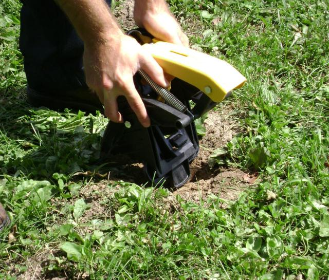 user setting mole trap on lawn